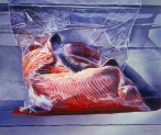 Trout in Ziploc Bag by Mary Pratt