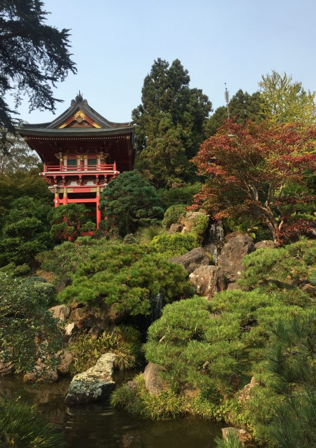 Japanese Garden, Golden Gate Park image by Terry Vatrt