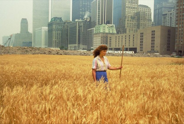 Wheatfields for Manhattan, Agnes Denes, NYTimes image